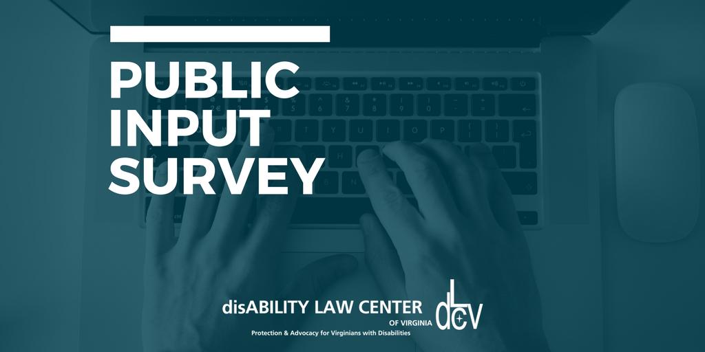 Twitter Public Input Survey (1)